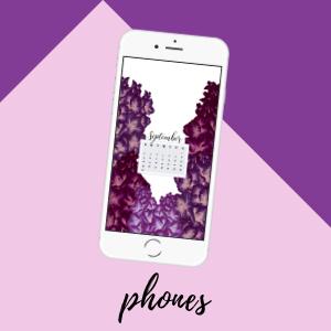 September 2018 Phone IPhone 5 640x1136